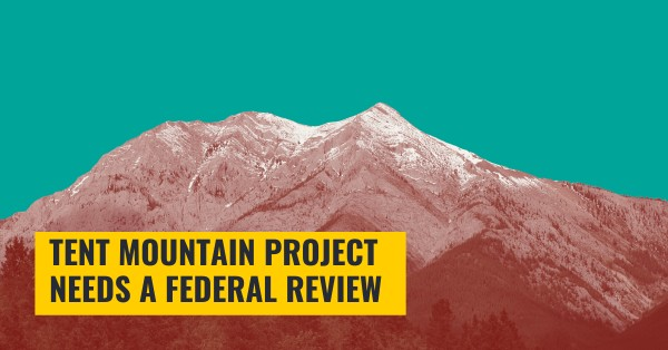 Tent Mountain needs a federal review