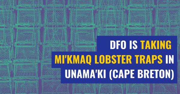 DFO is taking Mi'kmaq lobster traps in Unama'ki (Cape Breton)